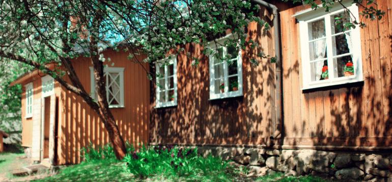 Kirsti museo ja omenapuunkukat
